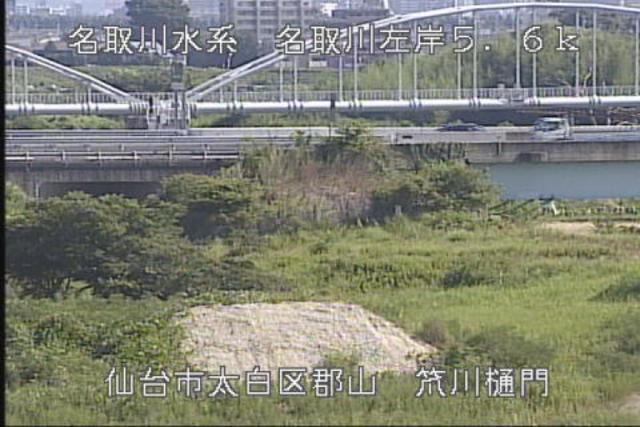 阿武隈 川 ライブ