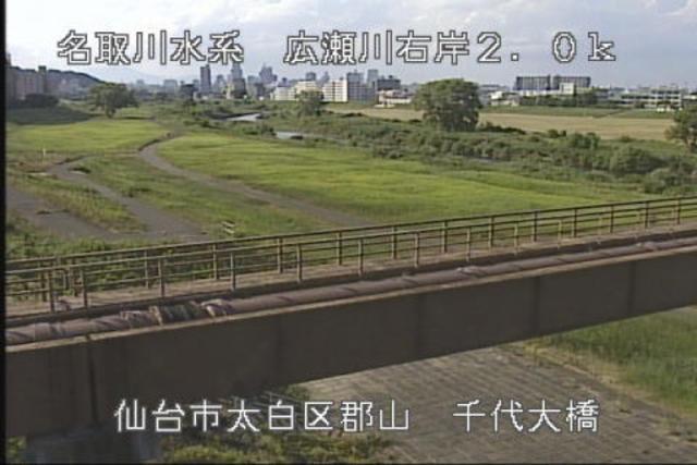 千代大橋右岸